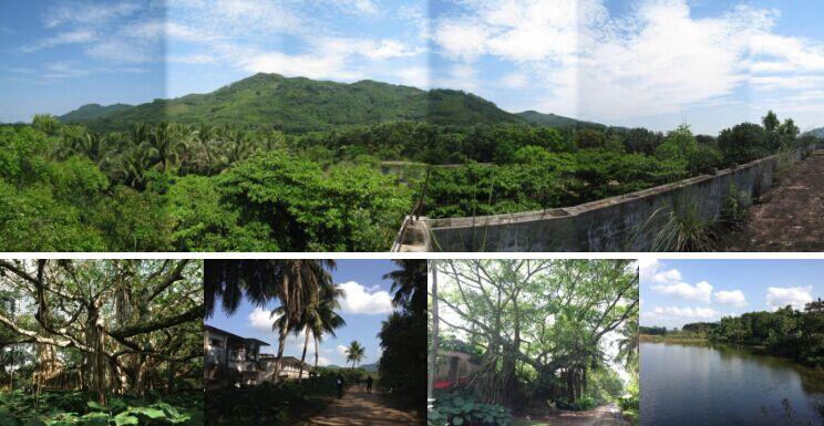 海南省某旅游度假区寻求合作开发[项目编号:XM386]