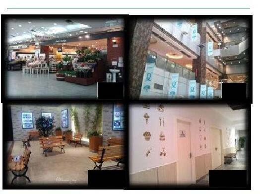 成都双楠商圈某优质商场收购机遇[项目编号:XM489]