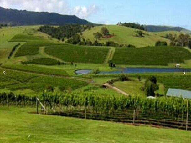 悉尼附近酒庄出售890万澳元(符合移民要求可办三家人签证)[项目编号:AUS150]