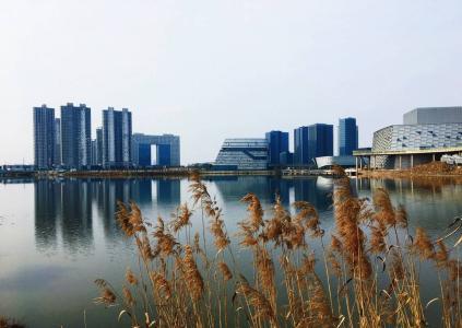 浙江省慈溪市某产权式酒店、住宅地块寻求合作