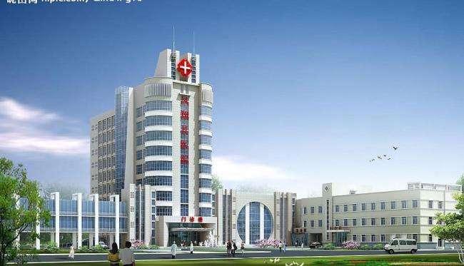 山东省某市某公立医院医养结合项目寻求合作[项目编号:XM1797]