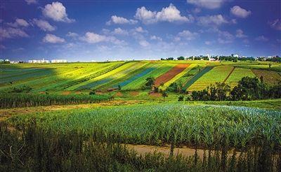 海南省海口市琼山区1200亩农旅用地9000万股权转让[项目编号:XM1718]