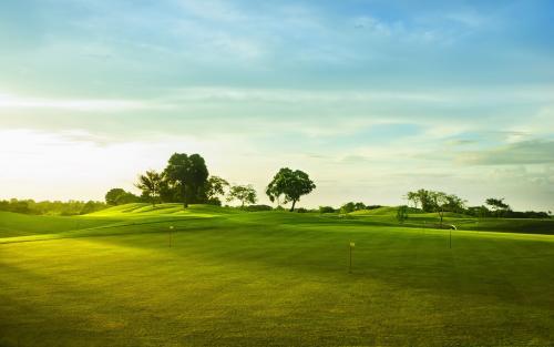 广东省某著名高尔夫球场改造项目(商住用地)释放49%股权37亿元[项目编号:XM1917]
