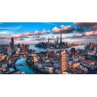 上海市浦东新区50亩住宅用地5亿整体转让或合作开发